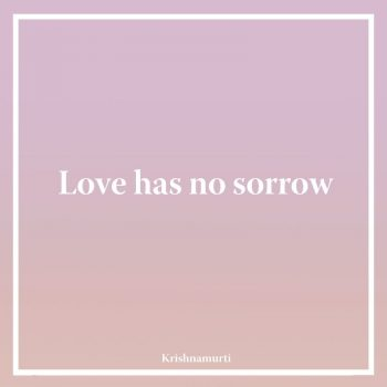 Love has no sorrow`