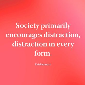 Society primarily encourages distraction